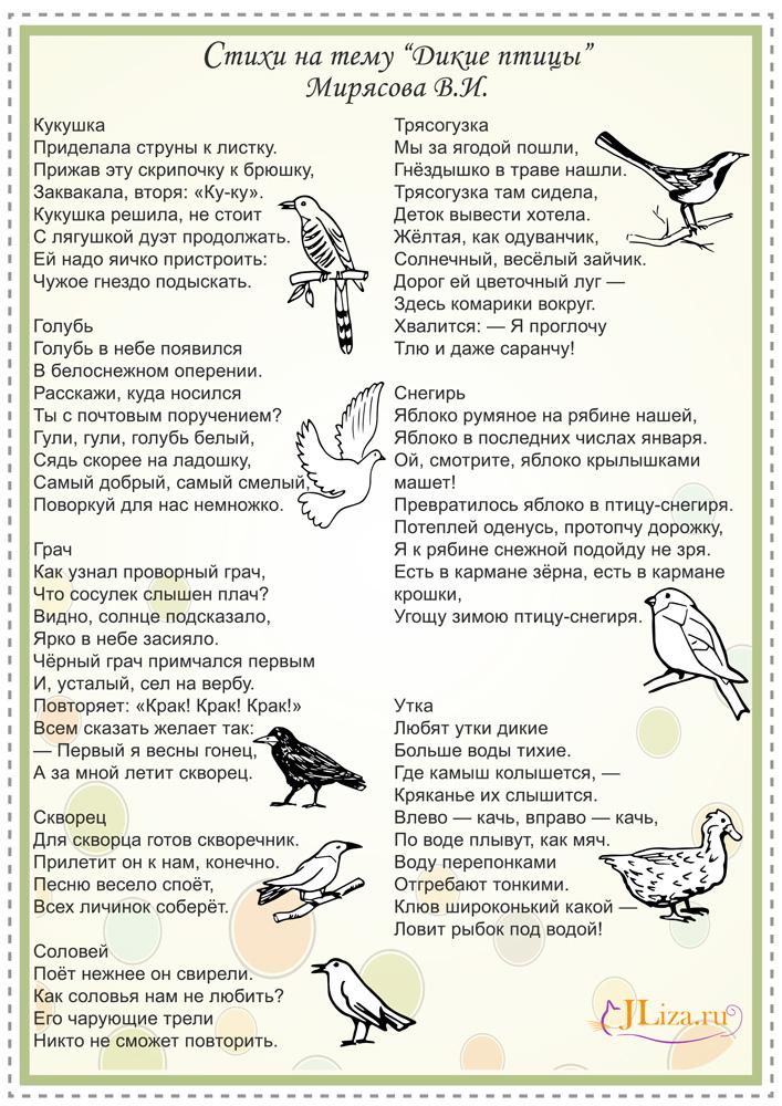 Детские стихи про птиц