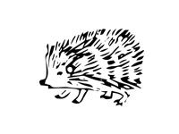 Стихи о диких животных