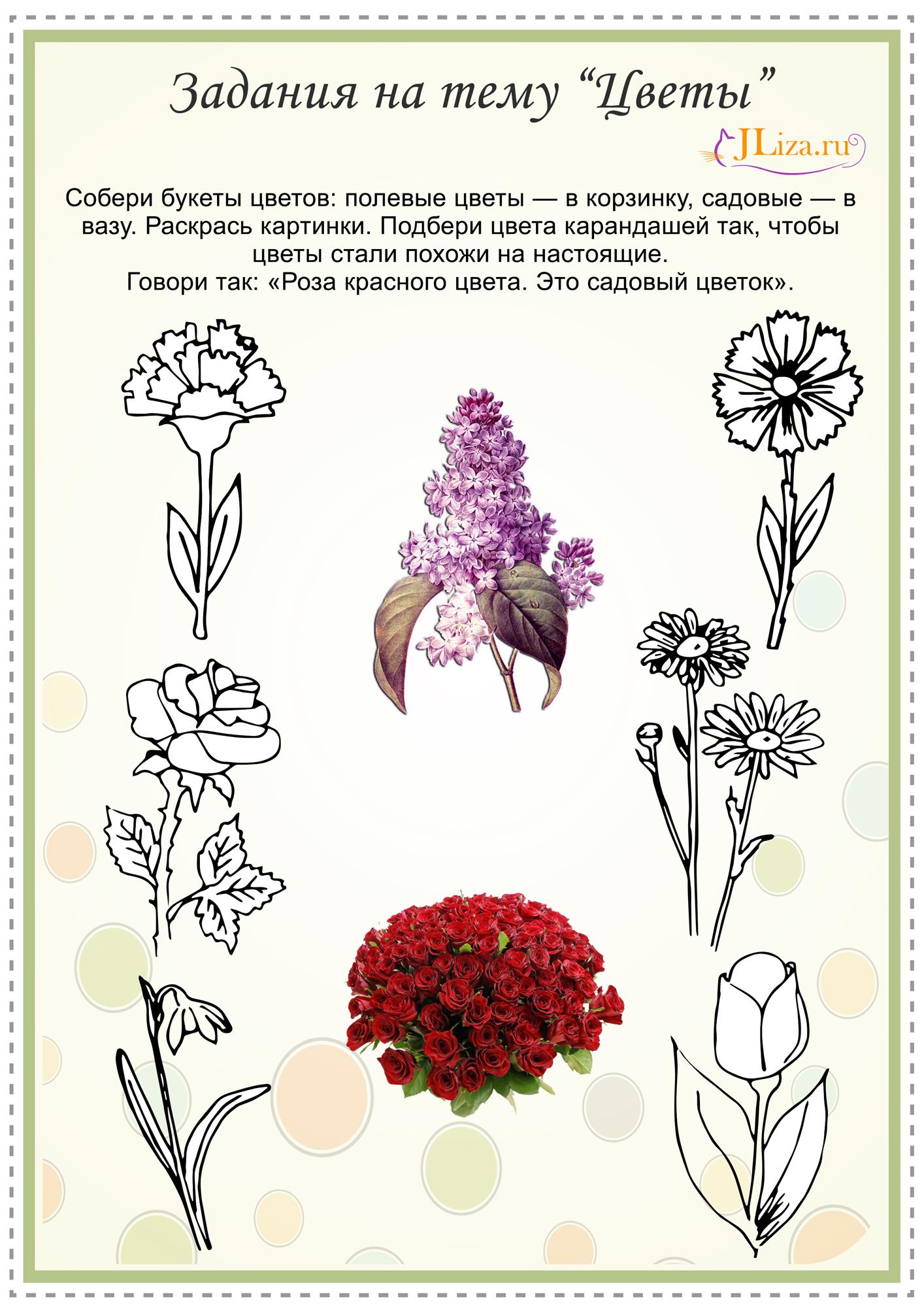 Все не цветушие цветы фото